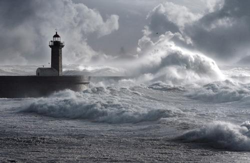 Post-hurricane-Irma-How-Lighthouse Pediatrics Weather the Storm.jpg